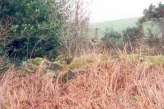 Cullaird-1
